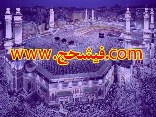 فیش حج تمتع از اندیشه -شهریار ثبت نام مهر 86 بانک ملی سه عدد فروشی 09125641981