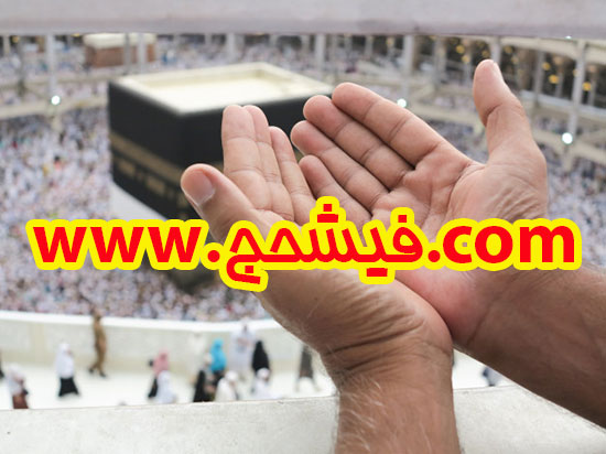 فیش-حج-فوری-فروش-اردیبهشت-سال-هشتادوشش-شیراز-09363160565