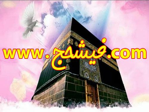 خرید و فروش فیش حج با مناسب ترین قیمت : خانم ناظری 09193718323